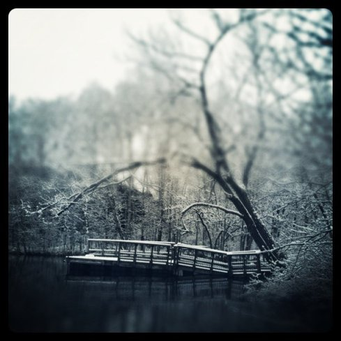 Photo of a dock at Quarry Park and Nature Preserve.